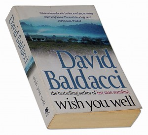 Wish you well - David Baldacci